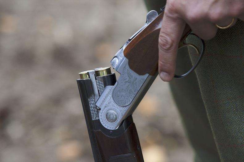 传统英国乡村活动—射击